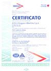 ISO9001_settore_39